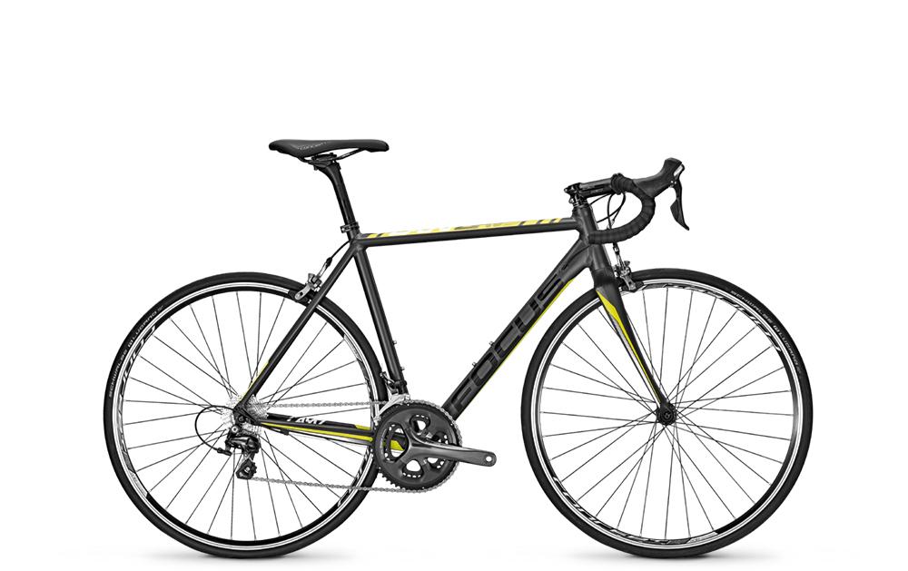 Focus 28´´DI´´CAYO AL TIAGRA´´20G  48XS - Total Normal Bikes - Onlineshop und E-Bike Fahrradgeschäft in St.Ingbert im Saarland