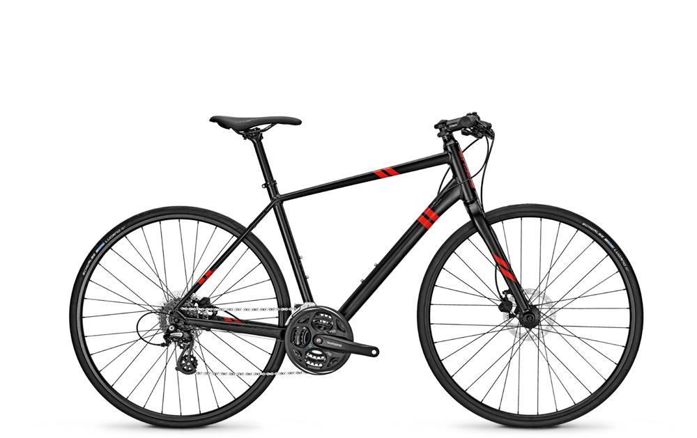 Focus 28´´DI´´ARRIBA ALTUS´´24G     55L - Total Normal Bikes - Onlineshop und E-Bike Fahrradgeschäft in St.Ingbert im Saarland