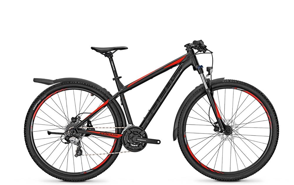 Focus 29´´DI´´WHIS.ELI.29 STR´´24G  42S - Total Normal Bikes - Onlineshop und E-Bike Fahrradgeschäft in St.Ingbert im Saarland
